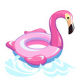 flamingo swimming inflatable beach or pool rubber vector image vector image