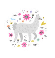 lovely lama drawing vector image vector image