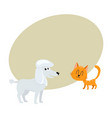 poodle dog and red cat kitten characters vector image vector image