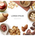 realistic fresh nuts template vector image vector image