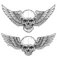 set of winged skulls isolated on white background vector image vector image