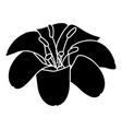 lily flower icon simple black style vector image
