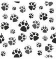 animal black foots and wildlife vector image