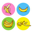banana icon collection vector image