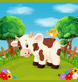 cartoon happy cow smile in the farm vector image vector image