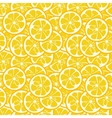 Cute seamless pattern with yellow lemon slices vector image