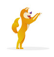funny dog with raised tail up standing and waiting vector image vector image