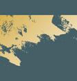 gold patina texture vector image vector image