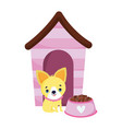 pet shop little puppy house and bowl with food vector image vector image