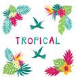 summer tropical corner elements vector image vector image