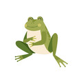 cute happy frog sitting holding paws on full vector image