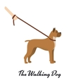 Dog boxer with a leash - on white background vector image vector image