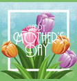 greeting happy mothers day decoration vector image