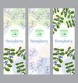 herbal tea collection honeyberry banner set vector image vector image