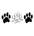 isolated cat paw print on white background vector image vector image