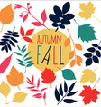 Autumn fall leaf Set design nature element vector image