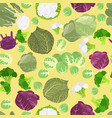 cabbage beneficial features seamless pattern vector image vector image