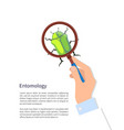 entomology poster and text vector image