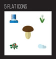 flat icon nature set of floral champignon berry vector image vector image