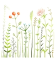 Flowers and Grass on White Grassland Collection vector image vector image