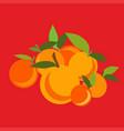 mandarin set light vector image