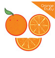 orange juice fruit vector image