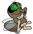 Sitting Fly vector image vector image