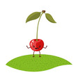 white background of realistic cherry caricature vector image vector image