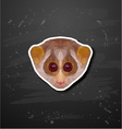 abstract polygonal loris triangle animal vector image vector image