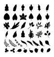 black foliage silhouette collection doodle style vector image vector image
