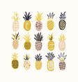collection of decorative pineapples of various vector image vector image