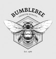design with bumblebee vector image