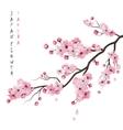 Realistic Sakura Branch vector image vector image