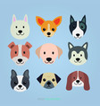 cute dog faces set vector image vector image