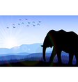 Elephant in the field at dawn vector image vector image