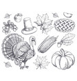 pumpkin thanksgiving symbols sketches set vector image