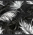 seamless summer pattern with white and black vector image vector image
