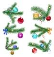 Christmas tree branches with Christmas balls vector image