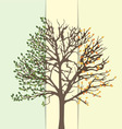 an abstract tree summer and fall vector image