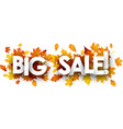 autumn big sale banner with leaves vector image vector image