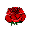 beautiful bright red rose tattoo artwork nature vector image vector image