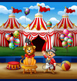 circus trainer performs a trick along with a lion vector image vector image