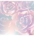 flower rose blossom bloom floral background summer vector image vector image