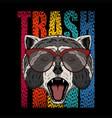 raccoon eyeglasses vector image vector image