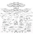 set calligraphic elements and page decorations vector image vector image