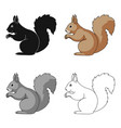 squirrelanimals single icon in cartoon style vector image vector image