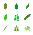small leaf icons set cartoon style vector image