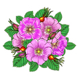 floral background with flowers rosehip vector image vector image