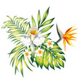 exotic composition tropical flowers and leaves vector image