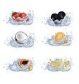 fruits and berries drop in water set vector image vector image